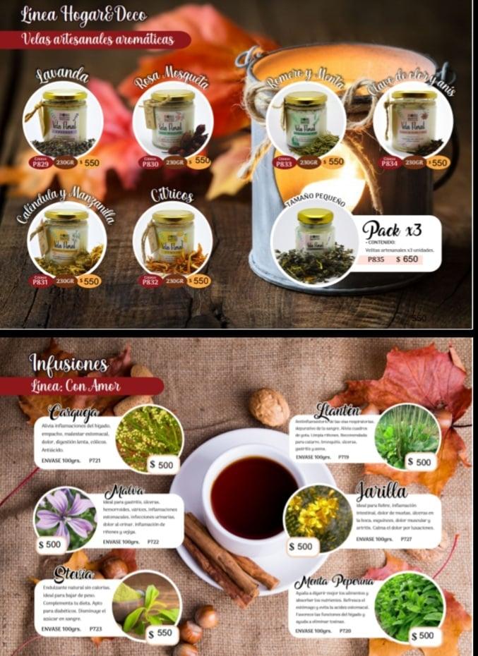 Catalogo de Aromas de la Creacion